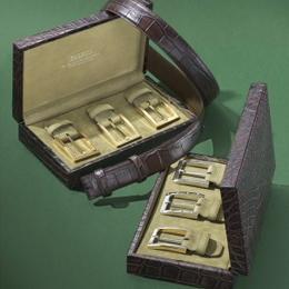 Ремень Tardini с набором пряжек