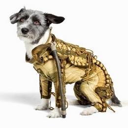 Советский скафандр для собак продается по цене €8,000