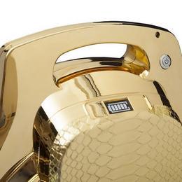 Потрясающая покупка: позолоченное моноколесо от Goldenie за $44000