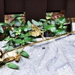 Ко Дню Святого Валентина: роза в оболочке из 24-каратного золота