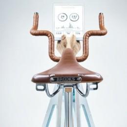 Престижный велотренажер