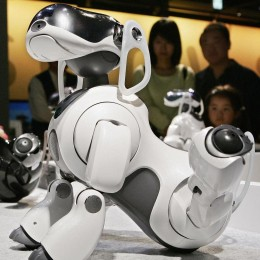 Sony возвращает робопса для конкуренции с Amazon Echo