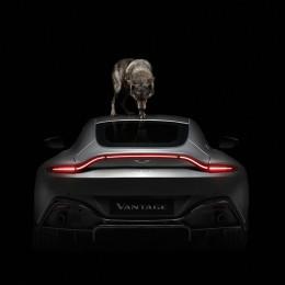 Aston Martin Vantage – мечта любого ценителя