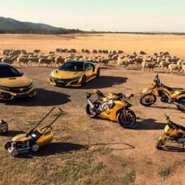 Honda завернула NSX и Civic Type R в золото в честь своего 50-летия