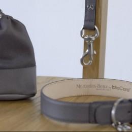 Mercedes-Benz представил коллекцию модных аксессуаров для собак