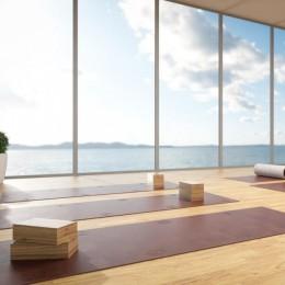Самый дорогой в мире коврик для йоги